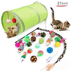 Assortiment de jouets pour Chat et chaton