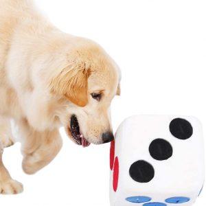 Dé géant Jeu Interactif pour chien