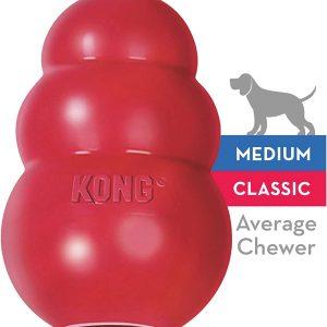 Jouet à modre pour chien en caoutchouc résistant Kong Chiens moyens