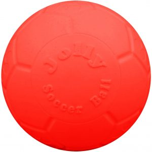 Jouet ballon pour chien 20 cm