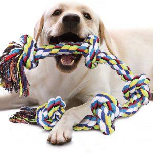 Jouet interactif pour chien Corde à mâcher pour grands chiens