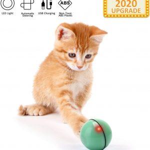 Jouet pour Chat seul Balle avec Lumière LED