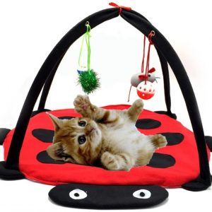 Jouet pour chat Tapis d'activités avec souris clochettes et balles