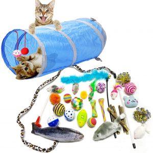 Jouet pour chats domestiques  balles souris plumes canne 31 pièces