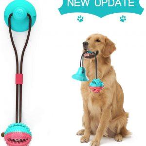 Jouet pour chien avec ventouse Nettoyage des Dents