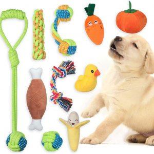 Jouet pour moyens chien Lot de 10 de Jouets à mâcher