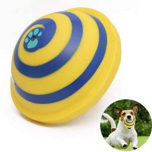 Jouets pour chiens avec disque volant et balle interactive