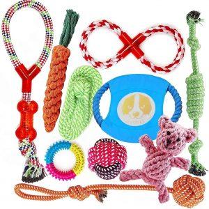 Lot de 10 de jouets pour chien à mâcher