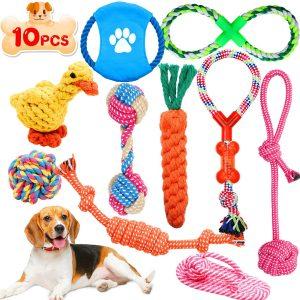 Lot de 10 jouets pour chien et chiot corde de dentition