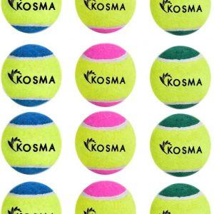 Lot de Balles de tennis colorée pour chiens